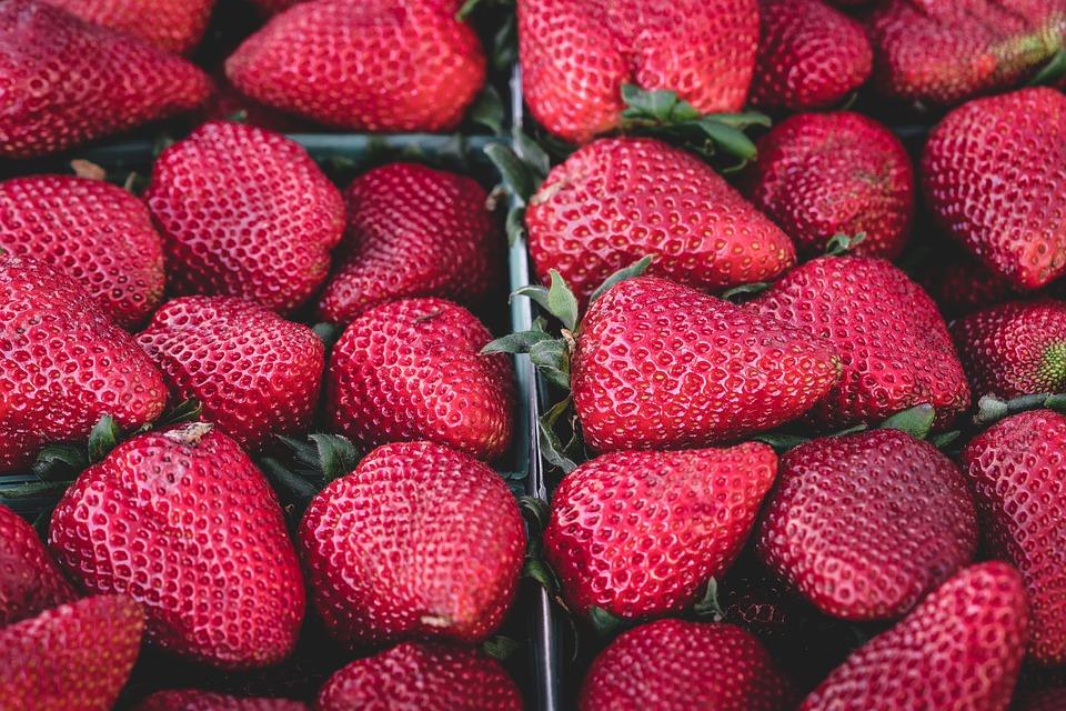 Seguridad alimentaria: la importancia de la manipulación de los alimentos en los hogares