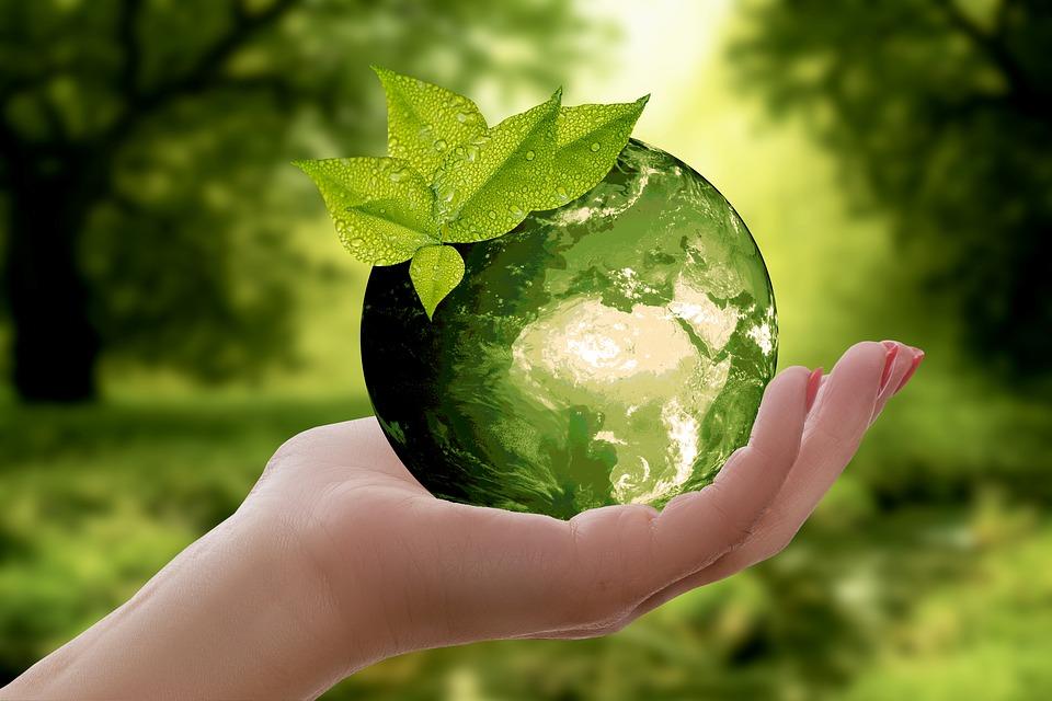 Cómo la logística puede convertirse en un sector más sostenible
