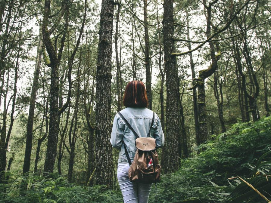 5 destinos eco sin salir de España